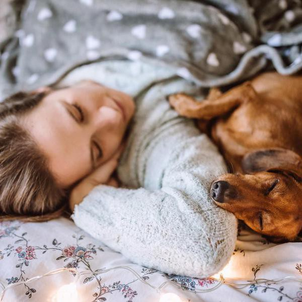 Does Your Dog Love You? Just Look for These 30 Signs