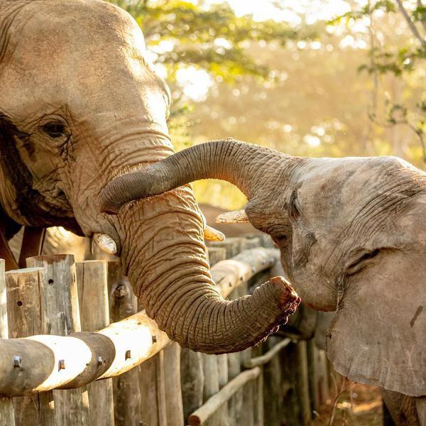 25 Best Wildlife Refuges in the World, Ranked