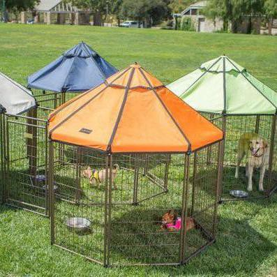 These Are the Best Dog Kennels You Can Get
