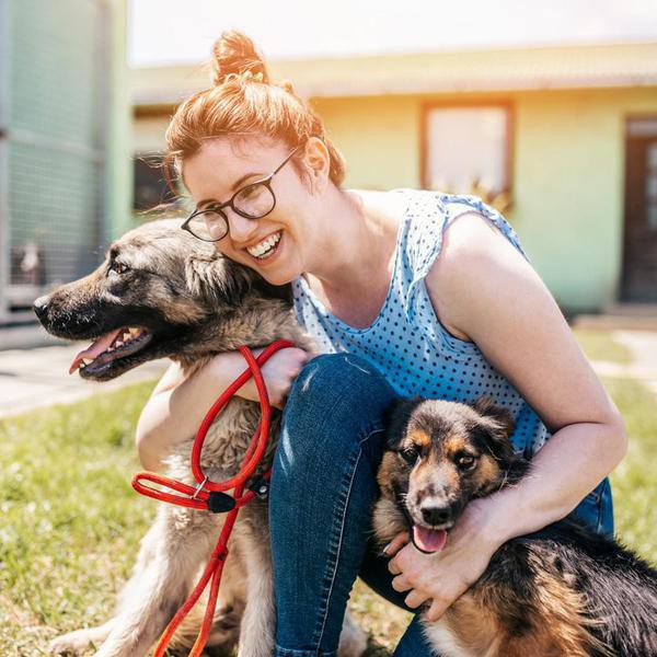 Young adult woman working and playing with adorable dogs in animal shelter