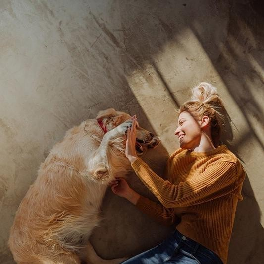 25 Calming Activities to Do With Your Pet