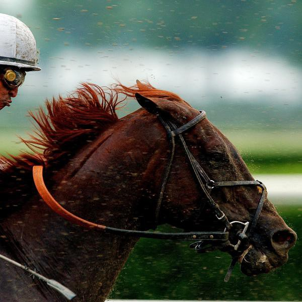 33 Fastest Horses to Ever Win the Kentucky Derby