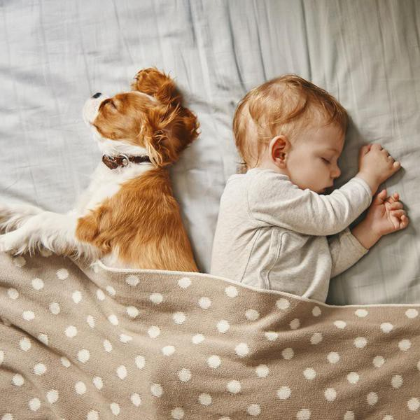 napping time